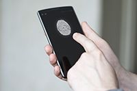 Flexible fingerprint sensors for mobile devices