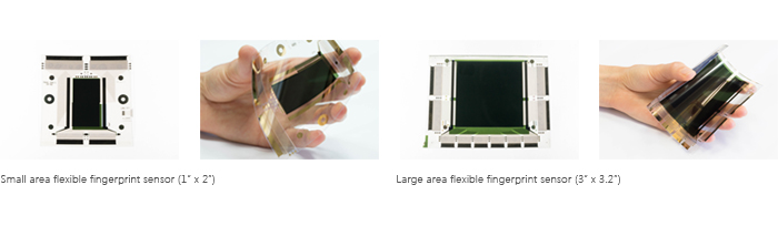 Flexible fingerprint sensor